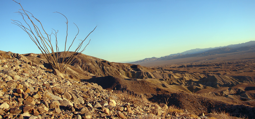 Above the Elsinore Fault, Coyote Mountains, Imperial County, CA, Andrew D. Barron©1/4/07