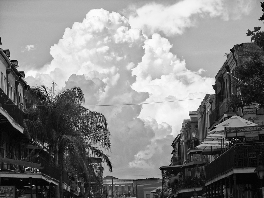 New Orleans, Andrew D. Barron©6/14/08