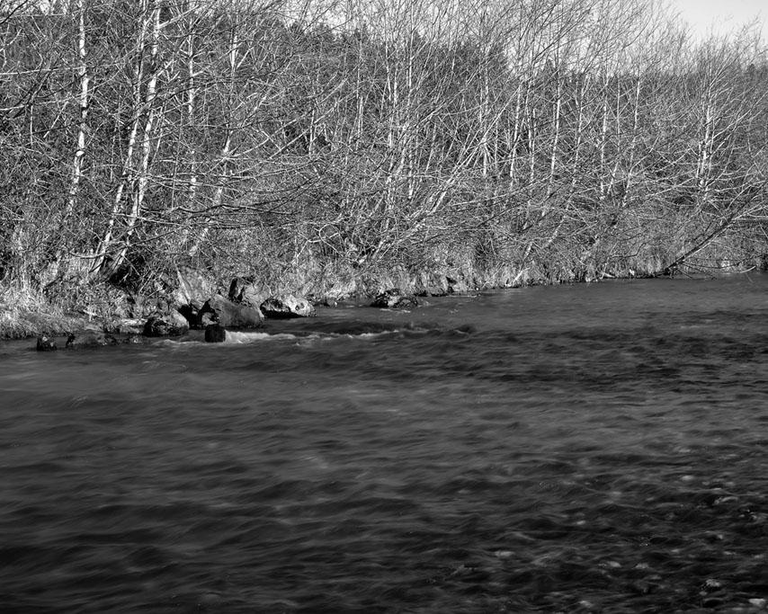 Euchre Creek bridge, Curry County, OR, Andrew D. Barron ©1/10/11