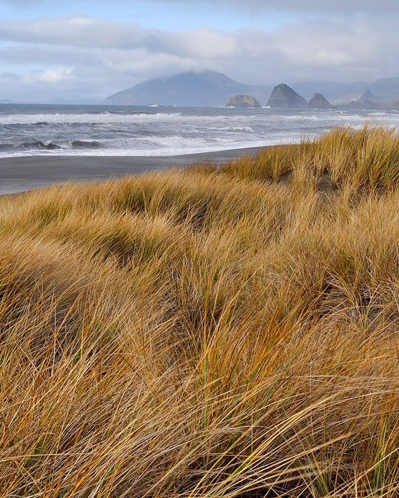 Ophir beach, Curry County, Andrew D. Barron ©1/17/11