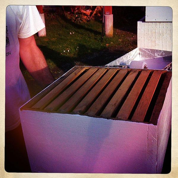 Warre Hive box get a new coat of paint, Andrew D. Barron ©1/30/11