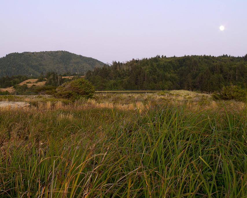 Sun sets Euchre creek marsh, Andrew D. Barron©8/11/11