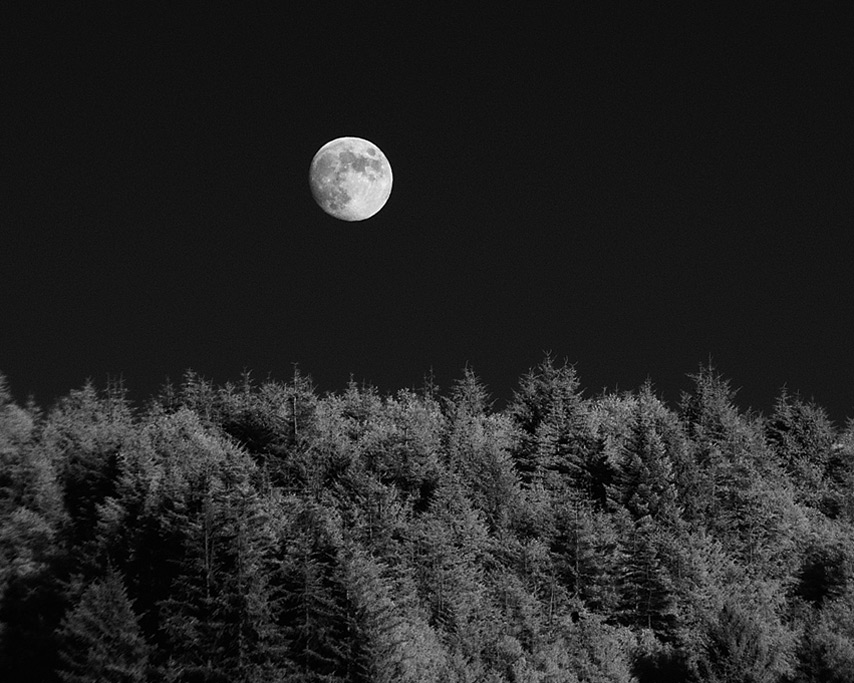 Ophir moonrise, Andrew D. Barron©8/11/11