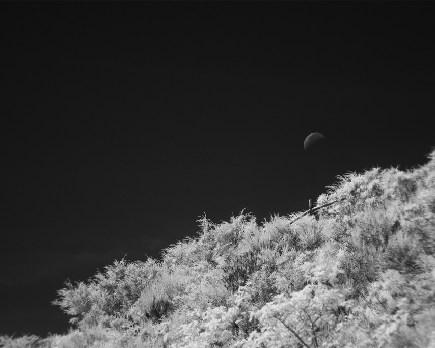 Waning crescent sets above fence, Wedderburn, OR, Andrew D. Barron©8/21/11