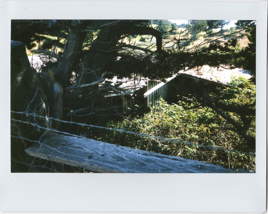 Instax 210 at abandoned home, Andrew D. Barron©8/26/11