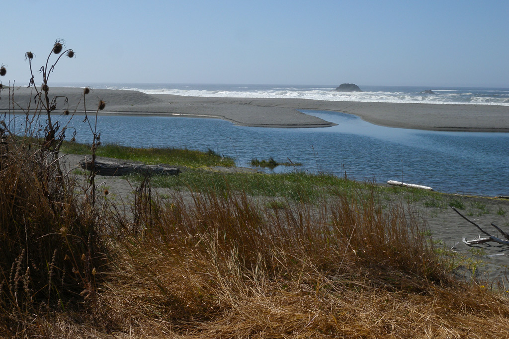 Myrtle Creek meets the Pacific, Andrew D. Barron©9/19/11