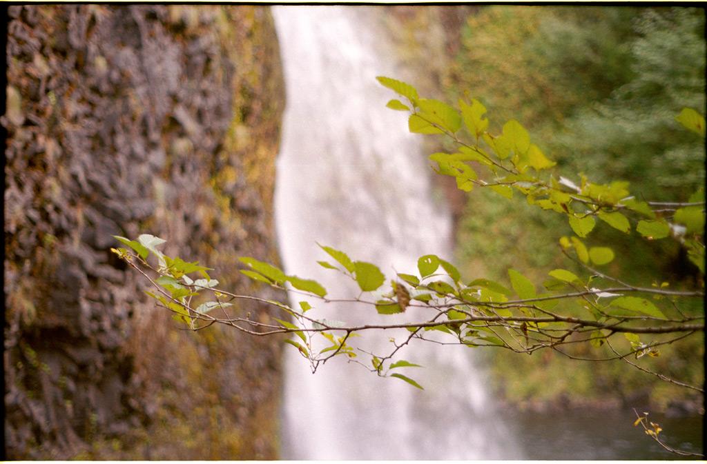 Horsetail falls, Columbia River gorge, Andrew D. Barron©10/15/11