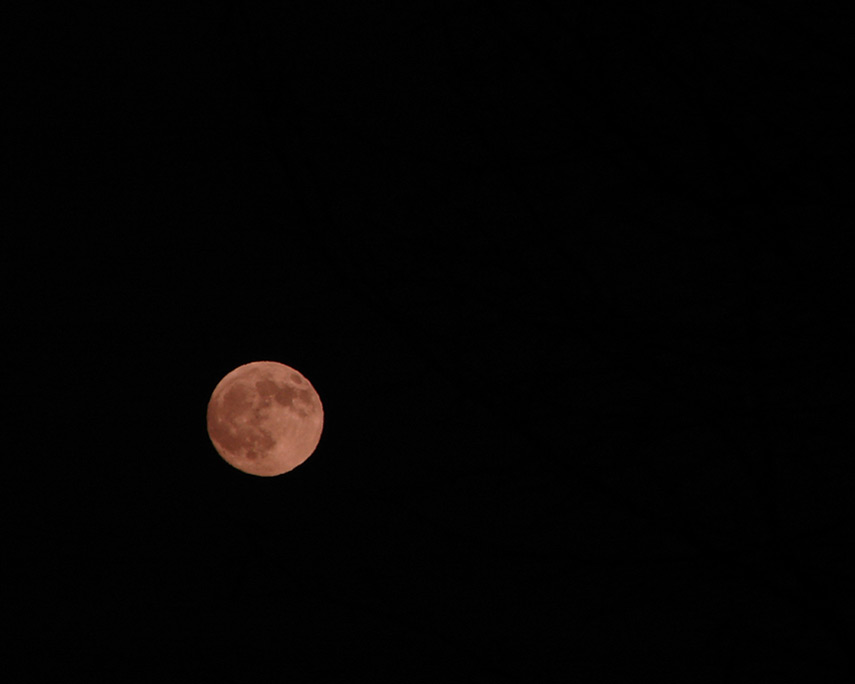 Vancouver moon, Andrew D. Barron©12/9/11