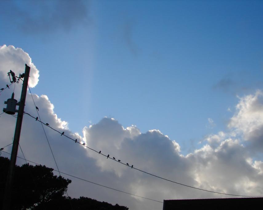 Blue sky above Nesika, Andrew D. Barron©12/30/11