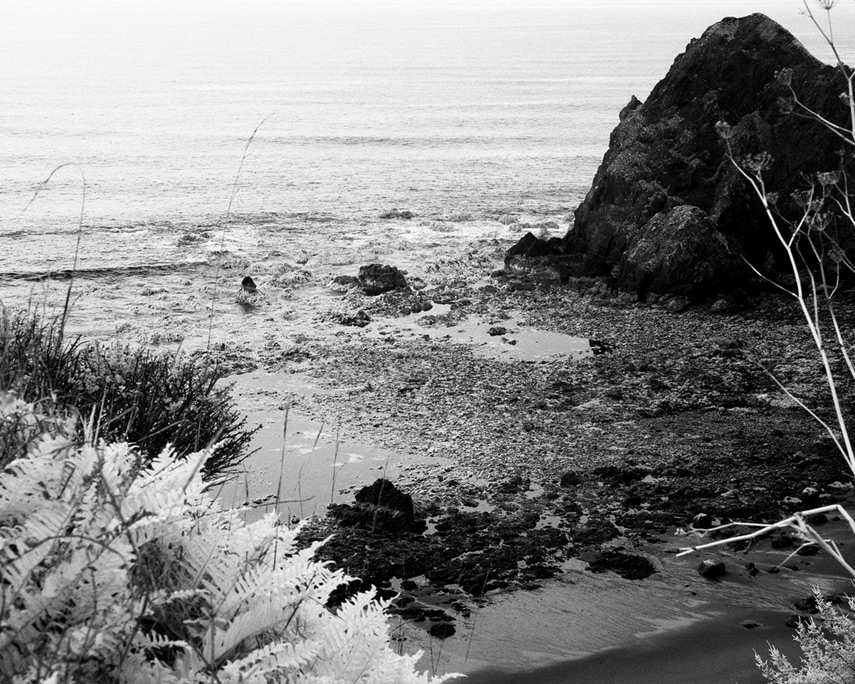 Low tide at Devil's Backbone, Andrew D. Barron©12/22/11