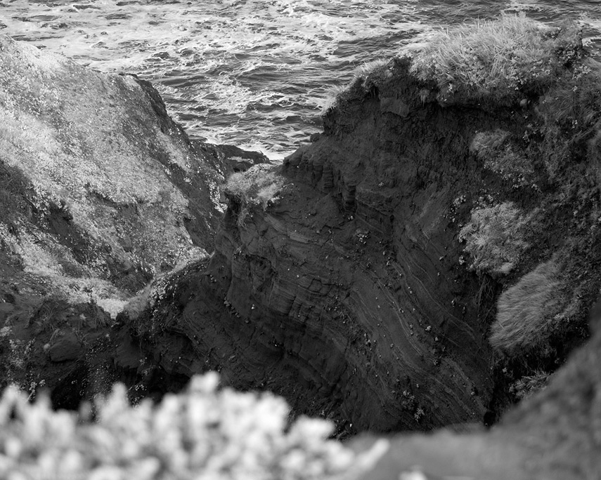 Outcrop detail, Otter Point, Andrew D. Barron©12/30/11