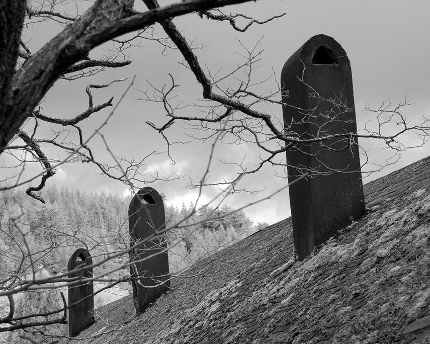 Old motel chimneys, Andrew D. Barron©12/30/11