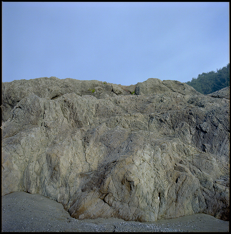 The beach at the end of the 333 trail, Andrew D. Barron©12/26/11 [Hasselblad 500c/m, 80mm ƒ2.8, Portra 400]