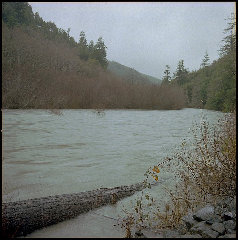 Lobster Creek,from North Bank road, Andrew D. Barron©12/30/11 [Hasselblad 500c/m, 80mm ƒ2.8, Portra 400]