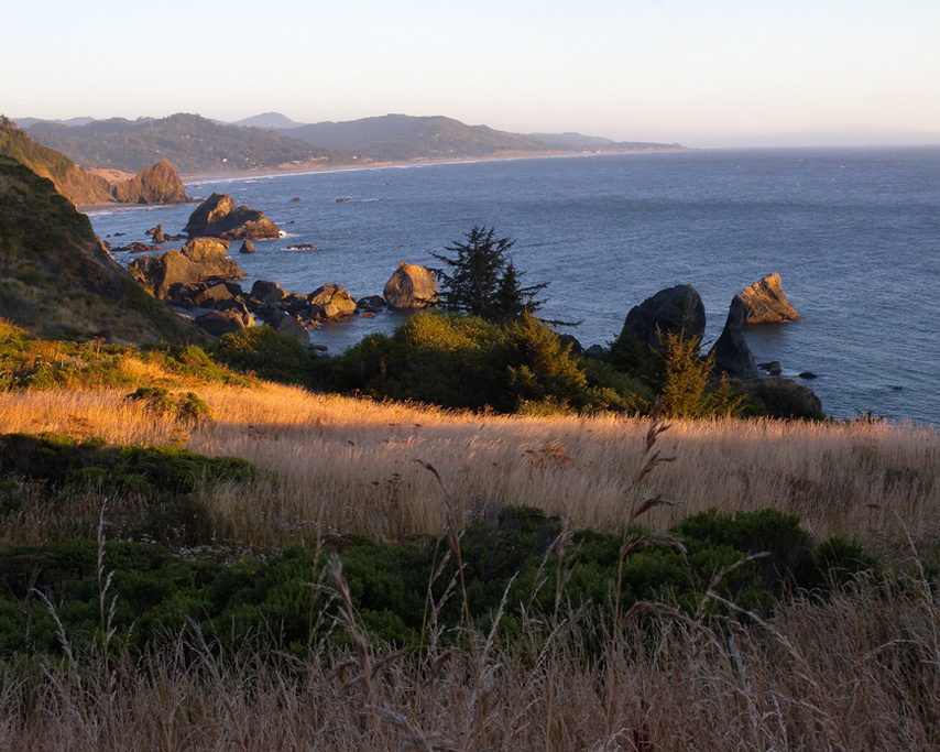 South from Sisters Rocks, Curry County, OR, Andrew D. Barron©7/31/11