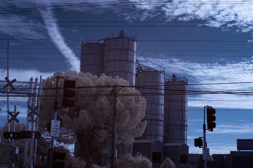 Sacramento Valley, Andrew D. Barron©1/10/12