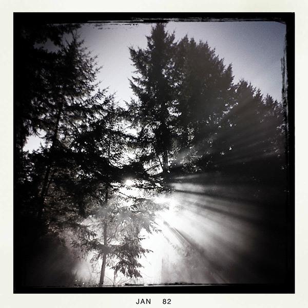 Andrew D. Barron©1/3/12