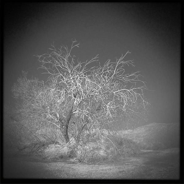 Andrew D. Barron©1/8/12
