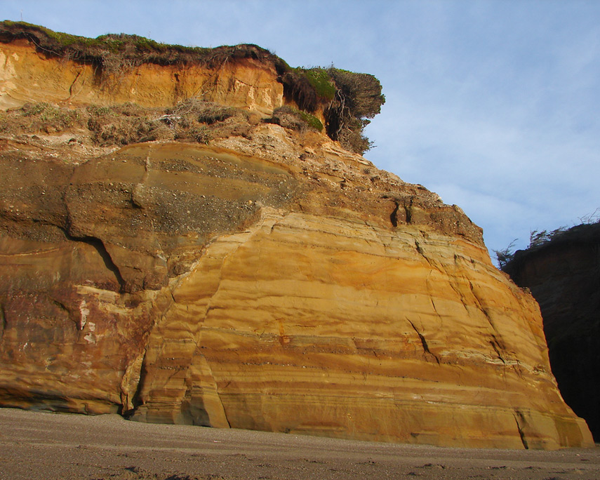 Sandstone cliffs of Blacklock beach, Port Orford, Andrew D. Barron©2/3/12