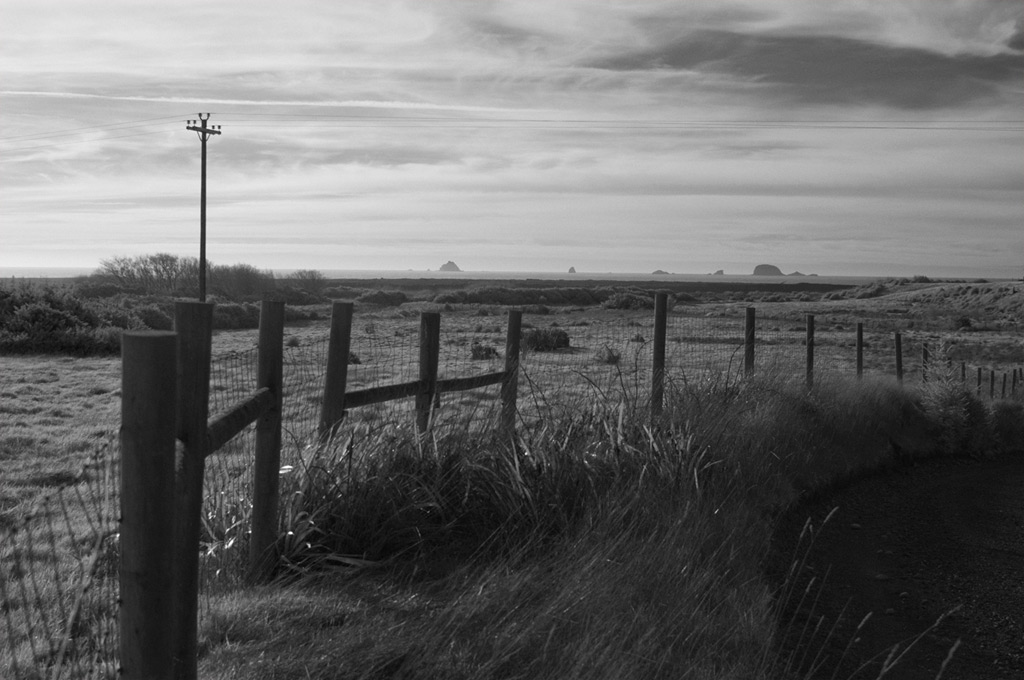 Fence.  Looking west towards the sea, McKenzie Road, Port Orford, Andrew D. Barron©2/2/12