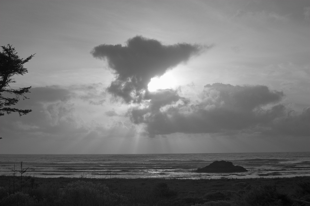The Pacific, Andrew D. Barron©2/20/12