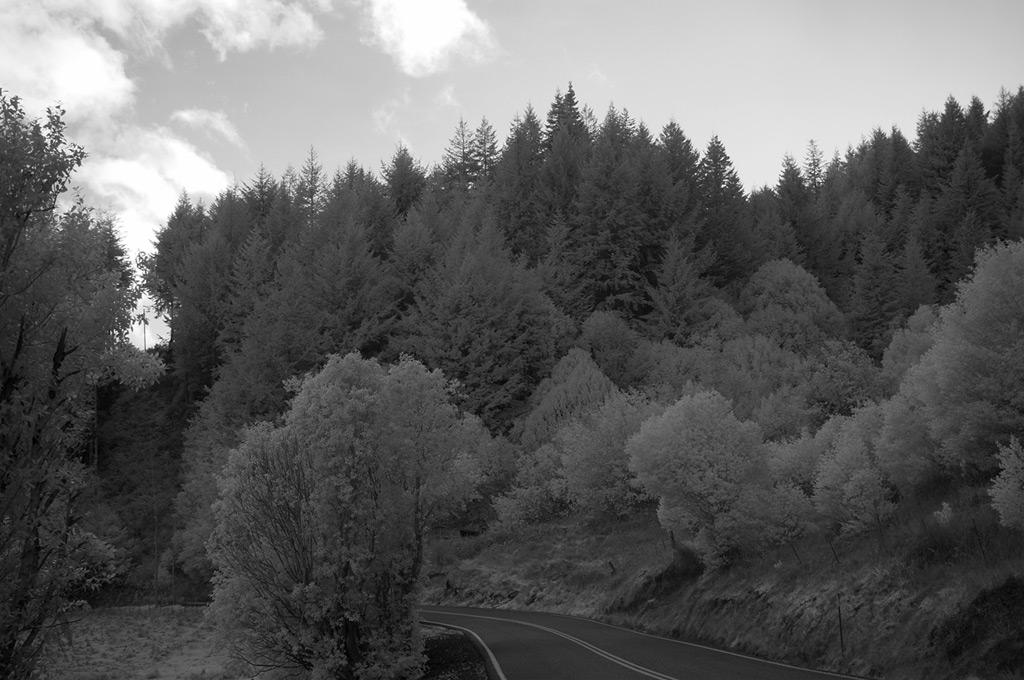 Euchre Creek valley, Andrew D. Barron©2/22/12