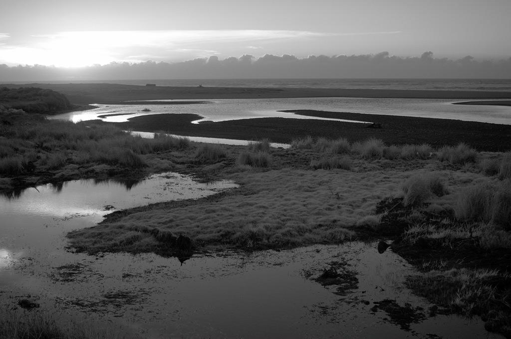 Euchre creek meets the sea, Andrew D. Barron©2/22/12