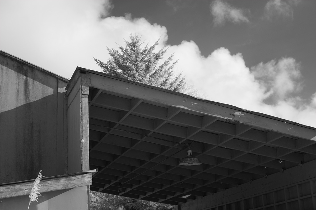 Gold Beach, Andrew D. Barron©3/1/12