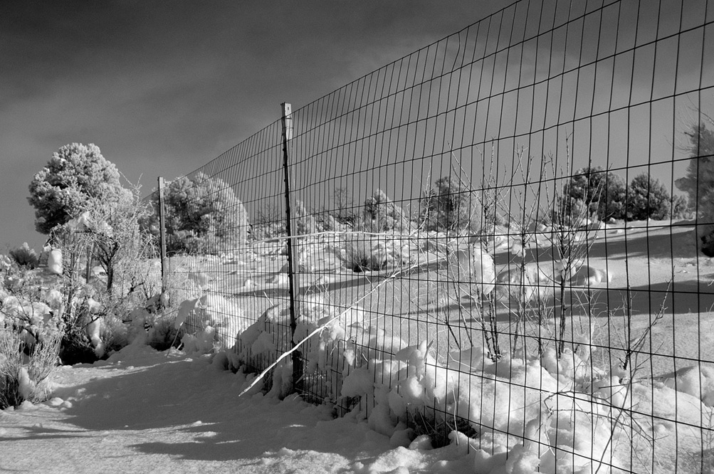 Day after, snowy fence, Andrew D. Barron©12/26/12 [Infrared converted D5000]