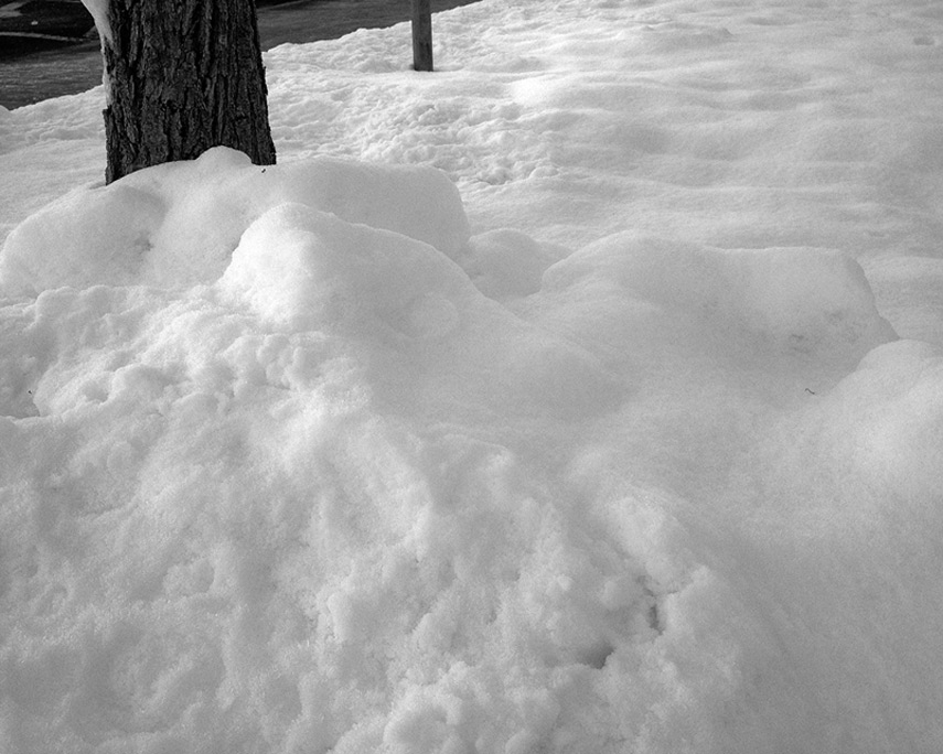 Snow was on the ground, Andrew D. Barron©1/3/13 [645 PRO for 4S]