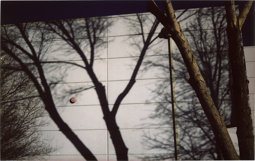 Shadows, south Reno NV, Andrew D. Barron©1/25/13 [Fujifilm Instax 210, silver edition]