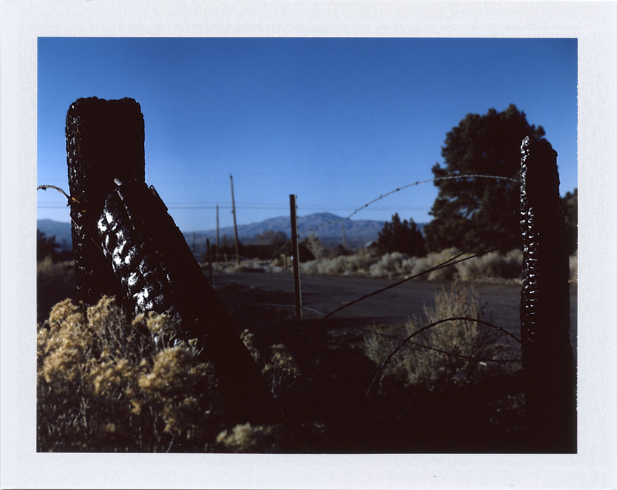 Burned up fence, Andrew D. Barron©2/3/13 [Polaroid 450: FP100C]