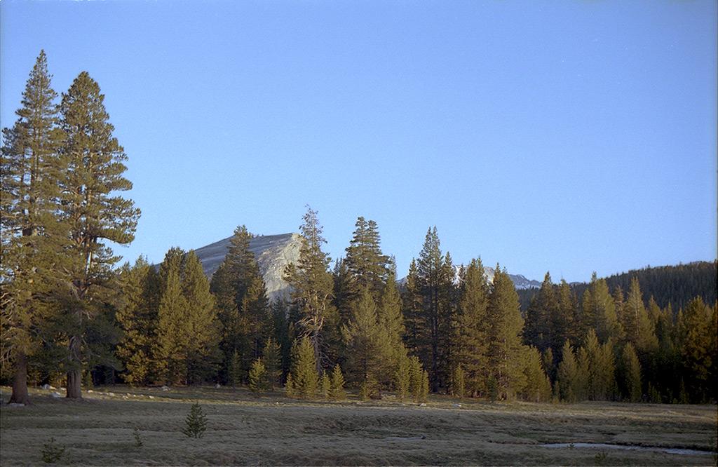 Tuolumne Meadows, Andrew D. Barron©5/29/13 [Leica IIIf, Summitar ƒ2.0, Portra 400]