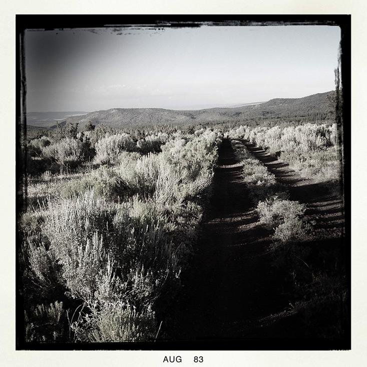 Hat Creek Rim lookout area, Andrew D. Barron©8/1/13 [iPhone 4S:Hipstamatic]